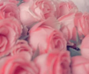 pink, valentines, and aesthetic image