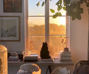 home, cat, and cozy image