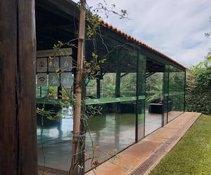 nature, peace, and natureza image