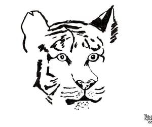 caricature, portrait, and zeichnung image