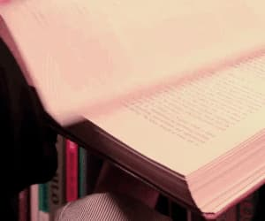 book, gif, and reading image