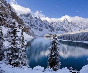 snow, winter, and winterday image