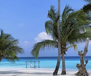 beach, landscape, and Maldives image