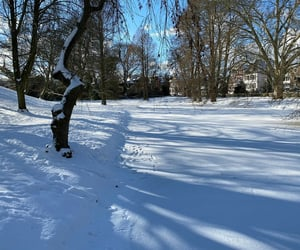 cold, silence, and snow image