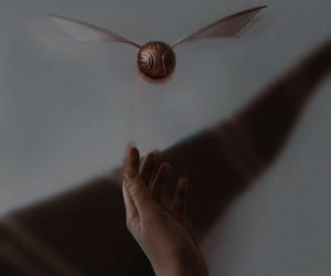 aesthetic, golden snitch, and harry potter image