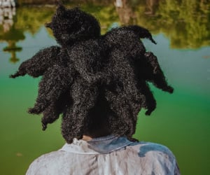 Afro, black women, and hair image