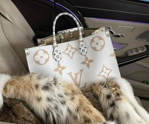fur, lifestyle, and Louis Vuitton image