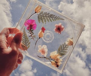 cd, flowers, and aesthetic image