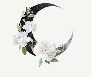 moon and wallpaper image