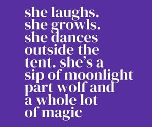 moonlight, poetry, and quotes image