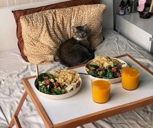 cat, pet, and salad image