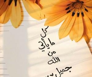 جُمال, الحياة, and الجنة image