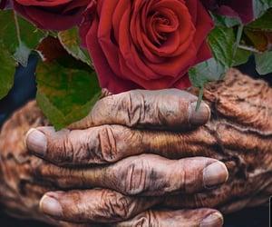 tiempo, abuela, and amor image