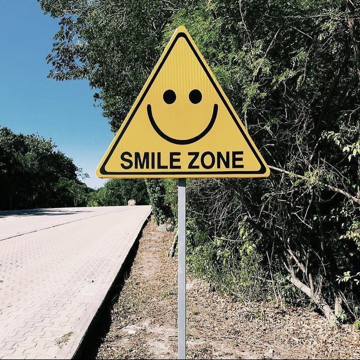 article, playlist, and smile image