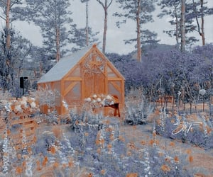 aesthetic, flowers, and cottagecore image