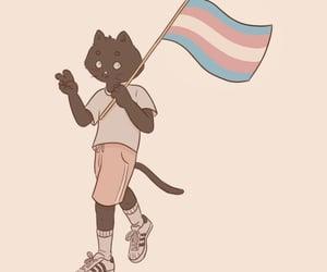 cat, human, and lgbtq image