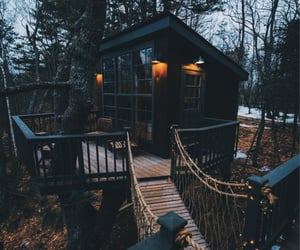 beautiful, Dream, and treehouse image