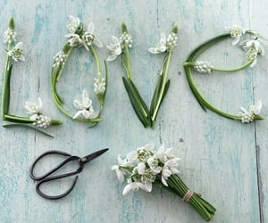 amor, inspiracion, and happy valentine's day image