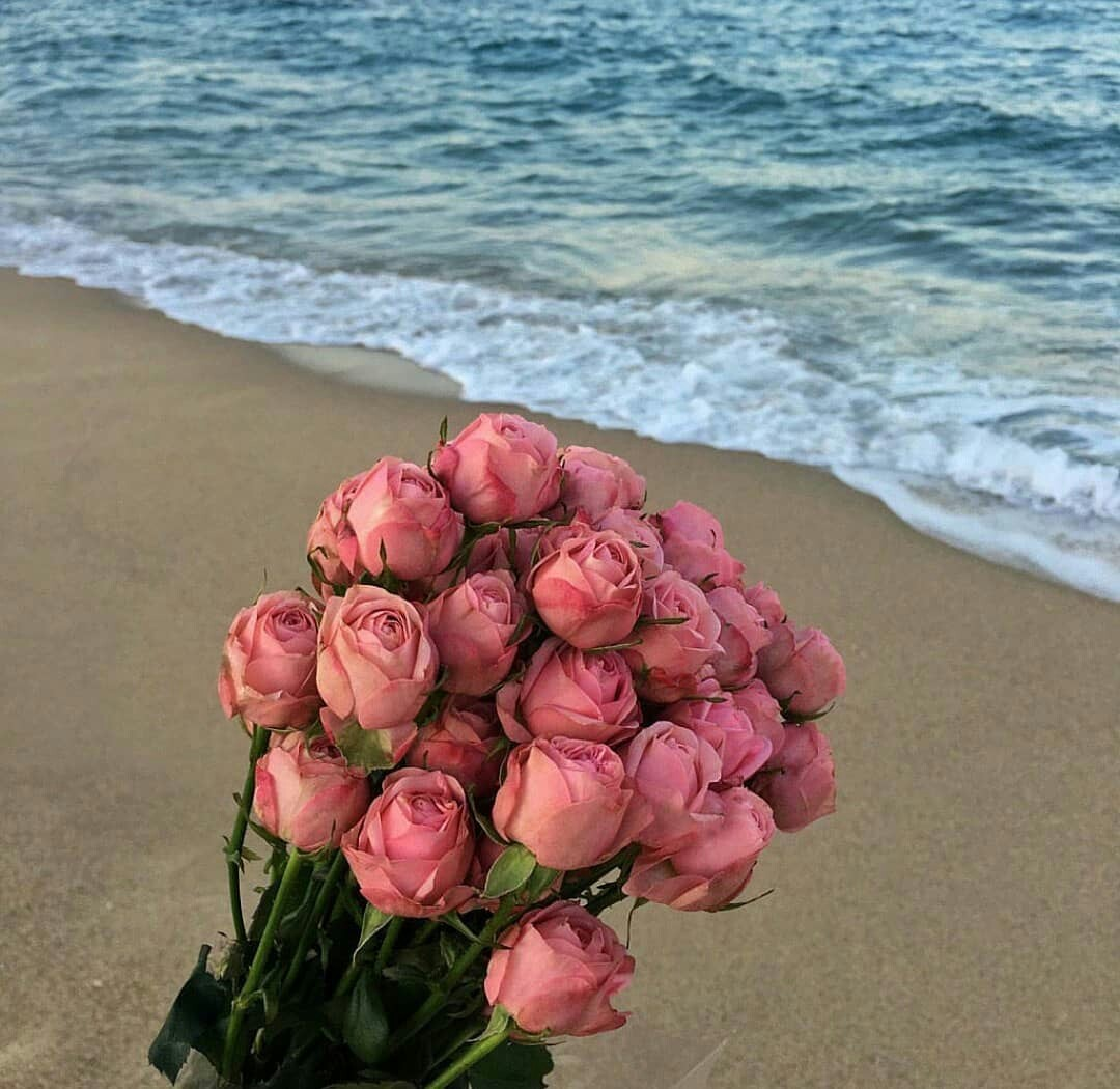 aesthetic, beach, and flower image