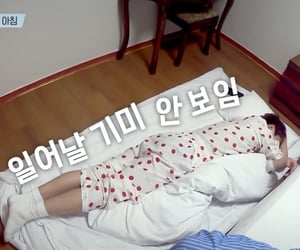catboy, kpop, and sleeping image