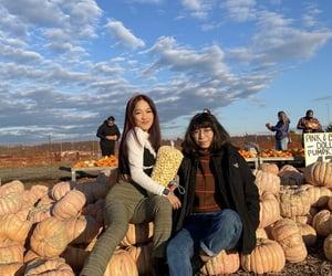 autumn, farm, and girls image