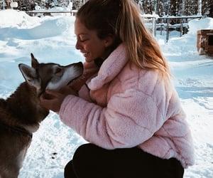 animals, cuteness, and girly image