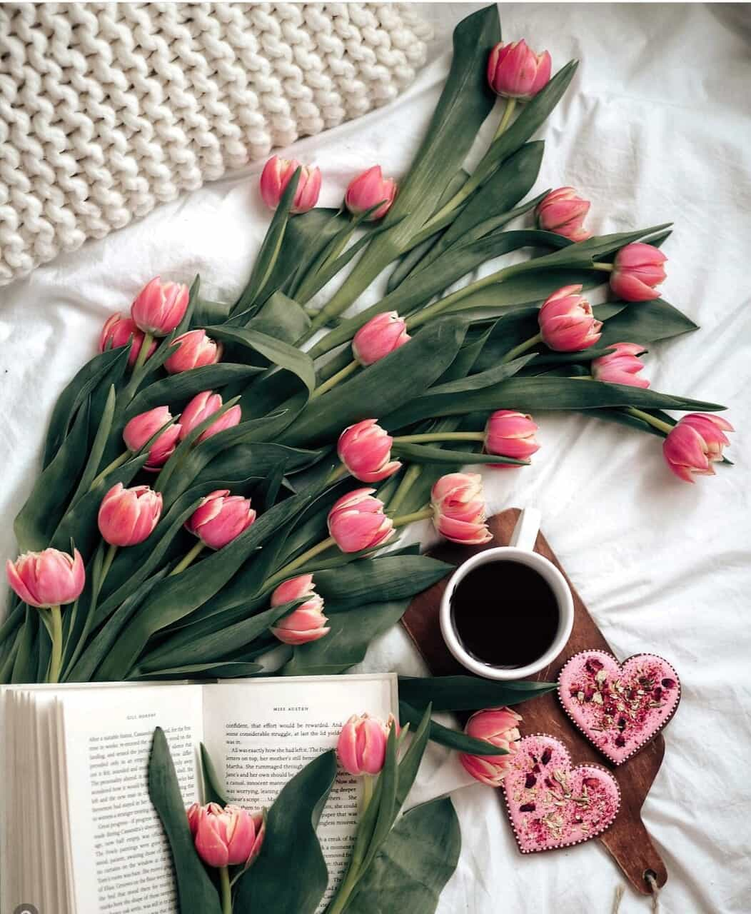 book, cozy, and inspiration image
