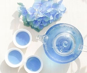 aesthetic, blue, and tea image