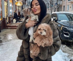 animal, goals, and dog image