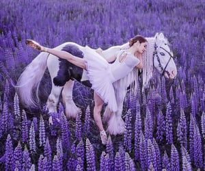 aesthetic, fairytale, and lavender image
