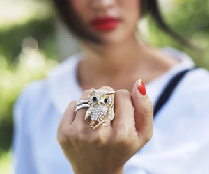owl, ring, and fashion image