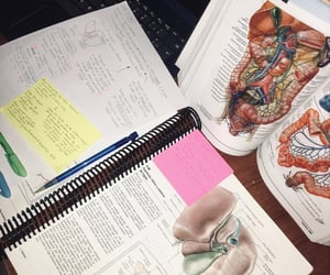 college, inspiration, and med image