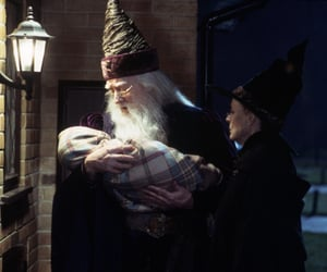 harry potter, warner bros, and wizard image