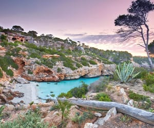 mallorca, spain, and travel image