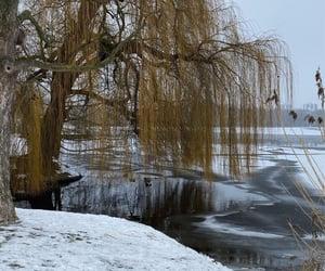 aesthetic, ice, and lake image