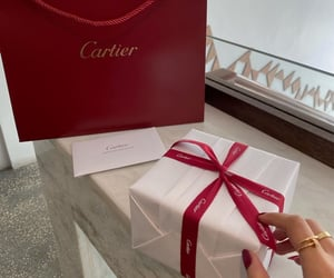 aesthetic, brand, and cartier image