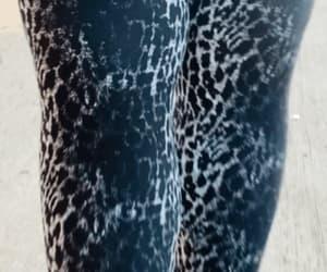 black & white, cheetah, and gif image