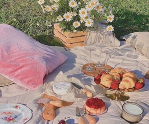 aesthetic and picnic image