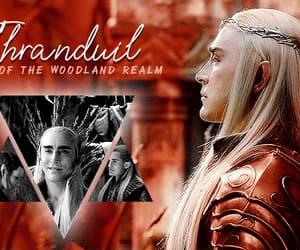 fandom, series, and the hobbit image