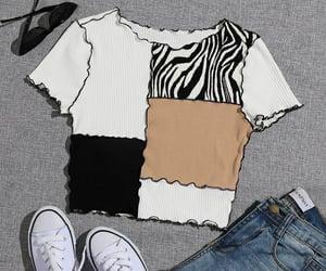 conjunto, style, and cebra image