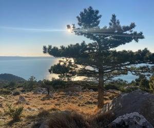 beautiful places, Croatia, and sun image