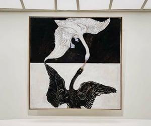 art, artistic, and black swan image