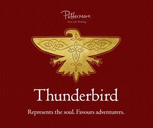 ilvermorny, ilvermorny house, and thunderbird image