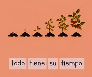 phrases, todo, and frases image
