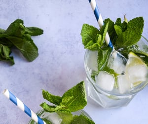 cocktail, lime juice, and mint image