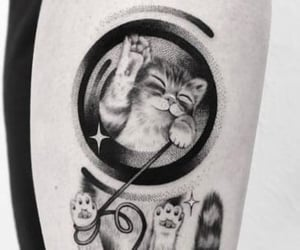 black, cat, and gato image