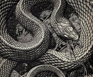 art, black and white, and serpent image