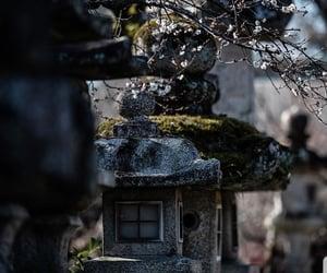 japanese, kyoto, and shrine image