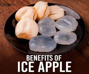 ice apple nutrition, ice apple calories recipe, and advantages of ice apple image