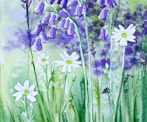 art, beauty, and bluebell image